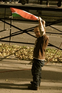 A Hungarian boy waves a flag in the streets today