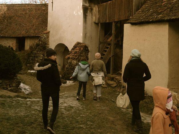 Viscri ruins