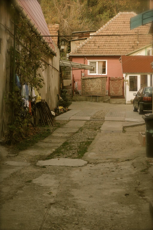 #balkanbeautiful in Transylvania