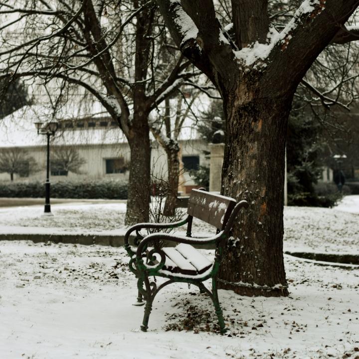 bench_fotor