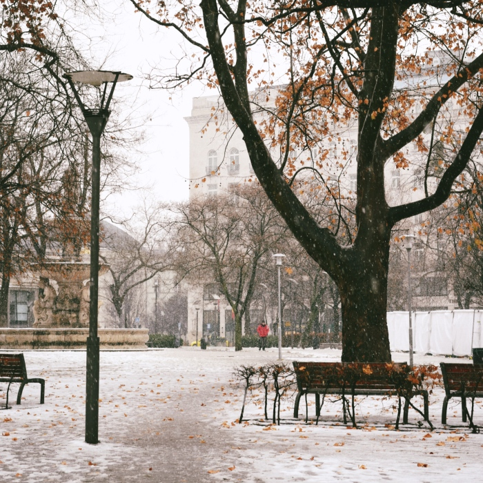 benches_001_fotor
